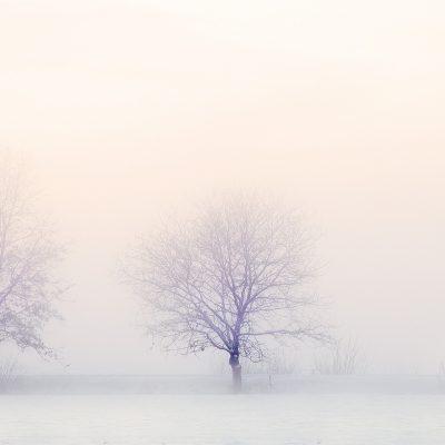 inverno-paralelo-italia-web-agency-2