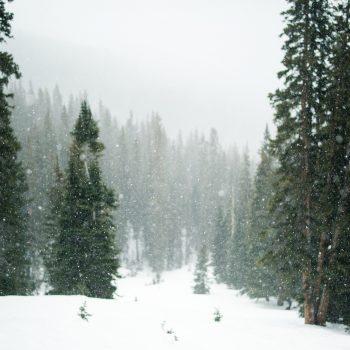 inverno-paralelo-italia-web-agency-4